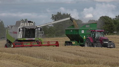 Claas Lexion 550 Combine Harvester unloading Winter Barley to Richard Weston Chaser Bin drawn by a Case IH Puma 225 CVX Tractor (Shane Casey CK25) Tags: claas lexion 550 combine harvester unloading winter barley richard weston chaser bin drawn by case ih puma 225 cvx tractor