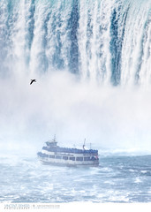 Boat Tour in Niagara Falls, Ontario, Canada (Vincent Demers - vincentphoto.com) Tags: voyage trip travel cruise ontario canada tourism nature water landscape outdoors niagarafalls boat waterfall eau ship niagara falls waterfalls northamerica bateau paysage cascade extrieur maidofthemist chute boatcruise touristattraction scenics tourisme horseshoefalls chutes croisire niagarariver travelphotography boattour travelphoto famousplace chutesniagara amriquedunord chutesdeau touristdestination traveldestination chutesduniagara photographiedevoyage attractiontouristique photodevoyage sitetouristique lieutouristique destinationtouristique travellocation destinationdevoyage rivireniagara tourdebateau hornblowerniagara