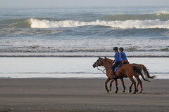 In Unison (fantommst) Tags: ocean county morning sea newzealand summer two horses horse black west beach silhouette landscape franklin coast seaside sand surf waves ride pair riding auckland together shore nz waikato tasman unison excersise karioitahi lisaridings fantommst whiriwhiri