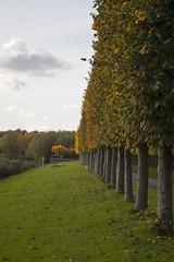 Floriade_251015_40 (Bellcaunion) Tags: park autumn fall nature zoetermeer rokkeveen florapark