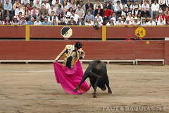 Chicuelina de Talavante en Lima (Vladimir Tern A.) Tags: peru gente lima bulls toros costumbres acho bullfighting bullfighters tauromaquia tradiciones toreros matadores corridasdetoros taurinos plazasdetoros feriataurina culturayarte