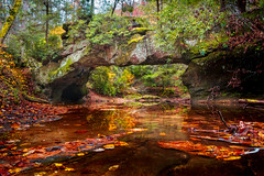 Tranquility at Rock Bridge (reflectioninapool) Tags: bridge autumn trees color fall nature water leaves rock horizontal stone creek forest reflections landscape outdoors woods sandstone stream day arch hiking kentucky nobody naturalbridge foliage vegetation rectangle redrivergorge danielboonenationalforest geologicalformation swiftcampcreek