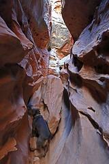 Biff's Little Wild Horse Obstacle (Bob Palin) Tags: 15fav usa dog canon landscape utah sandstone hiking biff sanrafaelswell catahoula emerycounty littlewildhorsecanyon club100 100vistas instantfave canonef24105mmf4lisusm orig:file=2015120703912
