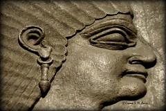 Details of a wall relief from Nimrud, housed in Scotland (Sumer and Akkad!) Tags: uk wall scotland edinburgh iraq nationalmuseumofscotland sword attendant mesopotamia assyria ashurnasirpal nimrud jamesyoungsimpson neoassyrian kalhu calah societyofantiquitiesofscotland