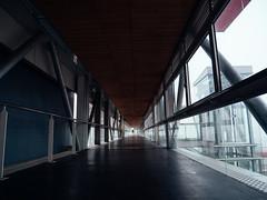 ligne de fuite (Fandral) Tags: roanne gare brouillard city journe ligne fuite