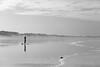Préparation (Franck Paul) Tags: eté saison paysages marins scènes