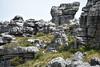 Rock Fortress (Javier Pimentel) Tags: rock tablemountain nationalpark climb southafrica capetown suráfrica sudafrica africa