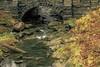Under the Bridge (daddymaverick91) Tags: stone bridge stream water river flow youngstown pride log nature art landscape calming