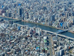 View from Tokyo Skytree (Travis Estell) Tags: bluebridge bridge japan nippon sumidariver sumidagawa tokyo tōkyō tokyoskytree tōkyōto 日本 東京 東京スカイツリー 東京都 隅田川 greenbridge