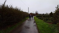 The Festive Season (Droitwich Dwellers) Tags: xmas christmas festive horses dog dogs jrt boardercross carson schnoobe juliebrown leebrown charlottebrown harveybrown ethanbrown jadehewlett jamiebrighton