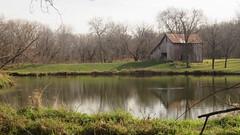 November pond (Clark Westfield) Tags: iowa pond rural autumn serene country still afternoon winter