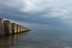 Lake Erie Groin (Digital Aviary) Tags: fall groin lakeerie