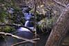sedas Rio Cuervo (Kilmar2010) Tags: agua rio river fluss water wasser cuenca spain españa cascada waterfall