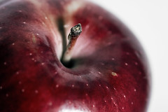 A is for... (AdaMoorePhotography) Tags: apple nikon red macro shiny fruit stilllife natural alphabet a d7200 105mm 105mmf28