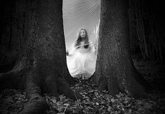 The Wall Between Us (Maren Klemp) Tags: fineartphotography fineartphotographer darkart darkartphotography blackandwhite monochrome nature thewoods forest outdoors trees woman selfportrait portrait plastic ethereal symbolic evocative conceptual surreal naturallight fairytale storytelling