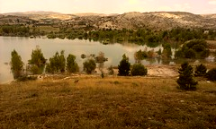 Mavi, Yeşil, Göl ve Ağaçlar. (Mehmet Çok) Tags: baraj göl lake ağaç konya su yaz mevsim altınapa yol dalga yeşil mavi dağ mountain güneş sun htc 28mm