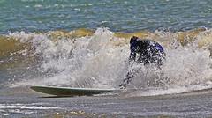 Mycket stänk (Quo Vadis2010) Tags: westcoast västkusten kattegatt hallandslän halland municipalityofhalmstad halmstadkommun halmstad sandhamn görvik cityofsurfers wavesurfing wavesurf vågsurfing vågsurf surfing surf vågor våg sea hav beach strand surfbräda bräda sport activity aktivitet lifestyle livsstil se