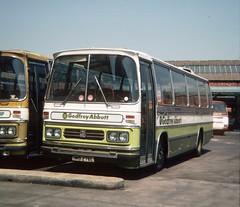Godfrey Abbott, Sale NMB 276L (Martha R Hogwash) Tags: gmt greater manchester transport godfrey group sale nmb276l bedford yrq duple dominant express abbott