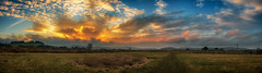 Buxton Panorama Sunset (Andrew Nimmo Photography) Tags: highpeakdistrict england unitedkingdom gb buxton derbyshire lowsun sunset panorama peakdistrict clouds skyline fields fairfield yellow orange grass grassland