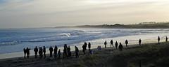Walking at sunset (Halfbike) Tags: alnmouth beachwalking seaside lumixgh4