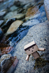 IMG_9732 (ever_freee) Tags: danbo danboard