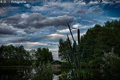 Haus am See 2 / House by the lake II (R.O. - Fotografie) Tags: sea house lake reed water clouds lumix see wasser outdoor wolken haus panasonic fz 1000 dmc schilf wildpark wildgehege willebadessen fz1000 dmcfz1000