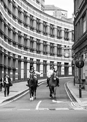 IMG_2579 (fernando.bardi) Tags: road street uk people blackandwhite horse building london monochrome canon cops outdoor police 500d