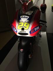 Rimini MotoGP (pineider) Tags: boobs titts rimini topless motogp misanoadriatico