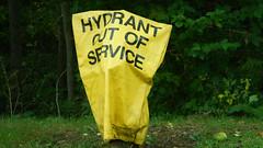 Dead Hydrant (blazer8696) Tags: usa ny newyork hydrant fire unitedstates plug somers ecw 2015 dscn9096 t2015