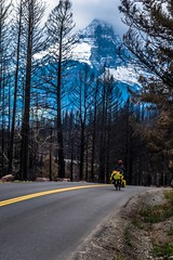 Much of Glacier Nat'l Park was ablaze this summer.