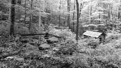 Ogle Mill (joeqc) Tags: gatlinburg tennessee unitedstates greytones black white canon 6d ef24105f4l mill tub flume monochrome mono gsmnp oncewashome