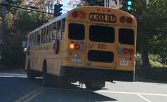 Brewster CSD #223 (ThoseGuys119) Tags: schoolbus icce icre brewsterny icfe bluebirdallamerican leonardbussales brewstercsd