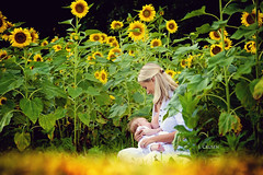 Yellow (jcrusenphotography) Tags: woman baby illinois child mother sunflower breastfeeding nursing centralillinois leleche jcrusenphotography theartofnursing