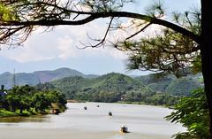 River boats (Roving I) Tags: trees boats landscapes scenic vietnam pines hue perfumeriver
