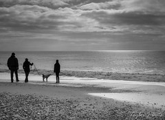 48/52 A Winters Day Out (ThatTennisBirder94) Tags: travel light sea england sky people blackandwhite bw seascape beach clouds out landscape outdoors photography coast landscapes photo day peace image cloudy photos outdoor united perspective kingdom images human coastal weeks element winters 52 a 4852 52project pentaxk5 thattennisbirder94