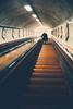 After the War (Sator Arepo) Tags: leica up 35mm vintage underground wooden belgium escalator steps rangefinder tunnel antwerp summilux amberes m9 preasph leicam9