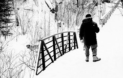 Keep to the Trail (Cindy's Here) Tags: fritz takeahike bridge wood snowwinter white bw cascadesconservationarea thunderbay ontario canada canon takeaim explore