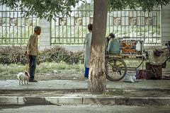 Stop and Go Chicken Market (Jim.J.H) Tags: chicken beijing china streetvendor