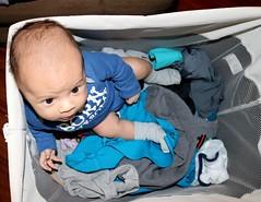 IMG_0079 (auraelise) Tags: newborn photographer canonrebel filipinoamerican labrador baby