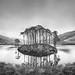 Potter Trees (twistednoodle) Tags: smugmug 2016 scotland kimberley flickr ilpoty2016
