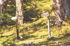 Which way to Paradise......@Tusi Pond, Mt. Syue, Taiwan. 雪山翠池旁美好晨光...... (Evo-PlayLoud) Tags: canoneos550d canon550d canon 550d efs18135mmf3556 efs 18135mm 18135mmkit mountain landscape scenery mtsyue taichung taiwan green 雪山 翠池 台中 台灣 武陵農場 wulingfarm 山 高山 百岳 風景 風景照 雪霸國家公園 雪霸 tree trees sunlight lightfantasy lightandshadows hdr grass grassland 大小劍山 雪山西稜