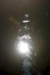 L1010713c (haru__q) Tags: leica m8 leitz summicron reflection 反射 water surface 水面