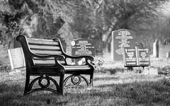 Time to put 2016 to rest (Rich Walker75) Tags: bench gravestone graveyard graves cemetery plymouth devon canon eos100d blackwhite blackandwhite monochrome