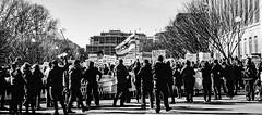 2017.02.04 No Muslim Ban 2, Washington, DC USA 00482