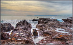 Morning Glow (tdlucas5000) Tags: seascape palos verdes rocks ocean sigma24105 sigma clouds hdr photomatix california