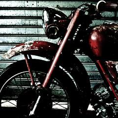 moto guzzi (archifra -francesco de vincenzi-) Tags: archifraisernia francescodevincenzi motoguzzi motocicletta motorcycle moto oldmotorcycle motoguzzifalcone square carré texture ruggine rusty madeinitaly mostrascambioautoemotodepocadisora motodepoca classicmotorcycle forcella ruota parafango fanale serbatoio garage fieradisora motorbyche