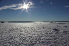 IMG_5204 (magicdeu1) Tags: döhlau bayern hof weinzlitz schnee sonne blume eis nebel windkrafträder windräder berge feld saale deutschland winter snow
