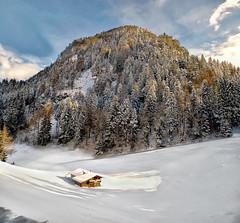 Winter Again (Don César) Tags: zillertal austria mountain snow nieve cabin cabaña hill trees arboles invierno winter white clear reithimalpbachtal tyrol kufstein valley valle tirol österreich centraleurope alpine alps europe europa alpes montaña