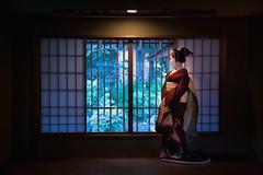 Maiko_20170205_27_5 (kyoto flower) Tags: kyoto international community house museum fukutomo maiko 20170205 舞妓 京都市国際交流会館 和風別館 ふく朋 京都 raisuke