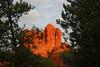 Dawn at Bell Rock - Sedona, Arizona - stunning colors in the morning (nikname) Tags: rocks trees bellrock sedona arizona sunrise redrocks arizonausa arizonaredrocks bellrocksedonaarizona daw